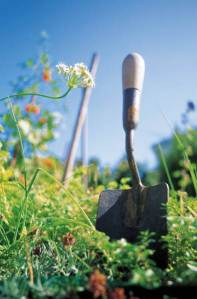 Be sure to have the right tools to cultivate a beautiful garden